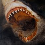 shark Oil on Canvas  200x180cm 2003