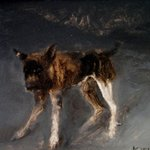 Dog No.5 Oil on Canvas  53x70cm 2001