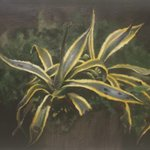 Golden Edge Orchio Oil on Canvas  45x45cm 2001