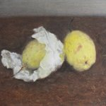 Pear No.1  Oil on Canvas  31x31cm 2001