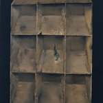 Yang Liu    Bookshelf   Oil on Canvas  200x150cm   2008 2