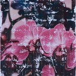 Parker Ito  Captiol Records Shit Toots pink and purple orchids  163x117cm Acrylic toner gloss varnish on canvas 2016